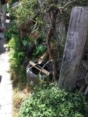 Mini-Japanischer Garten auf 50cm